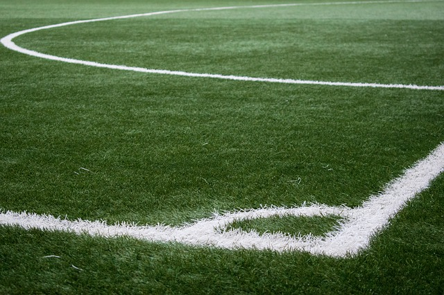 gramado de estádio de futebol