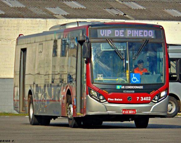 VIP de Pinedo número de passageiros