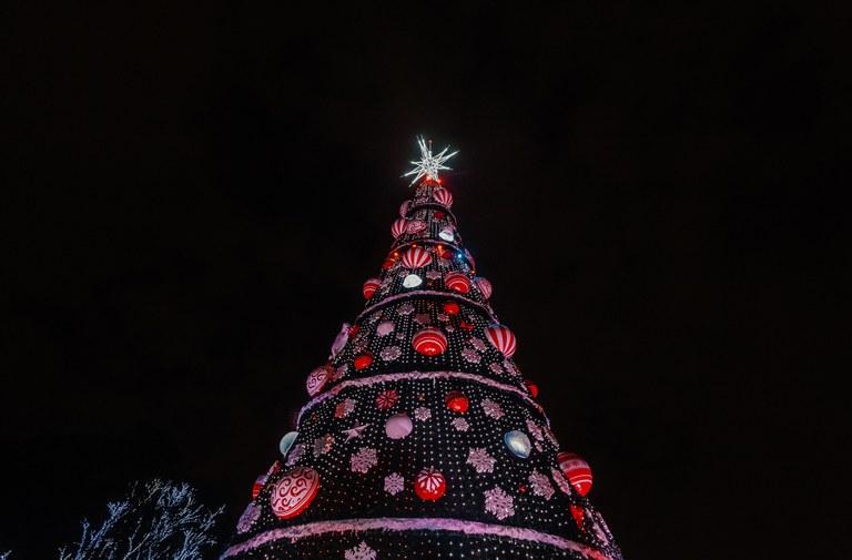 tradicional árvore de natal do ibirapuera