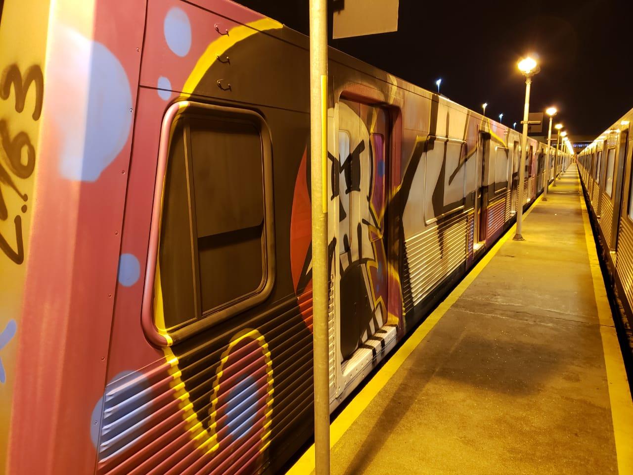 Trem pichado no Metrô